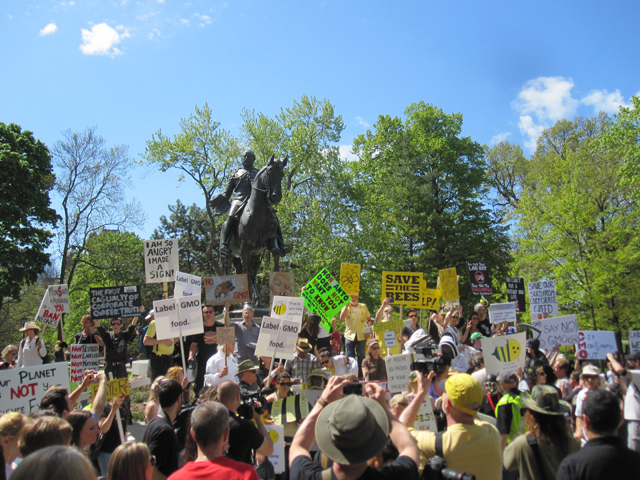 demonstrators gathered at Queens Park